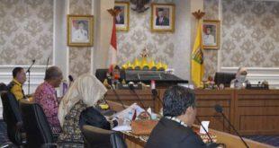 Rapat Bersama DPD RI, Chusnunia Sampaikan Langkah Antisipasi Pencegahan Virus Corona